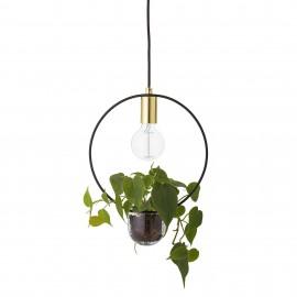 Lampe Suspension végétale