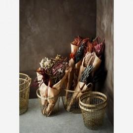 Bouquets de fleurs séchées - Madam Stoltz