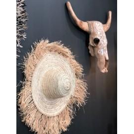 Chapeau palmier, franges raphia, naturel